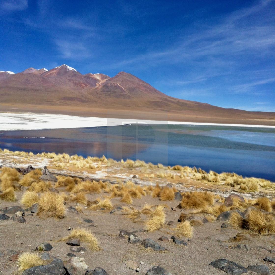 """Laguna Blanca, Bolivia"" stock image"
