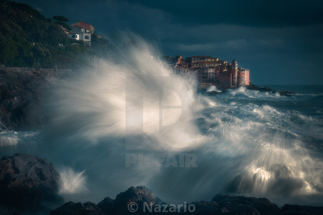 """""""The claws of the sea ..."""" stock image"""