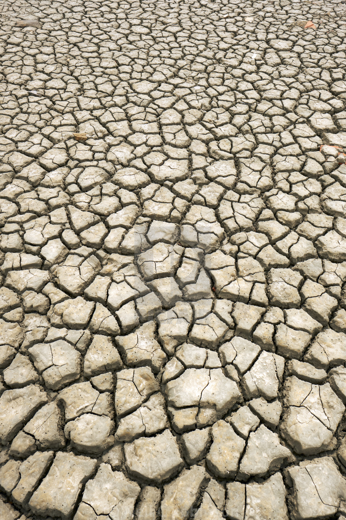 """Cracked parched earth :-("" stock image"