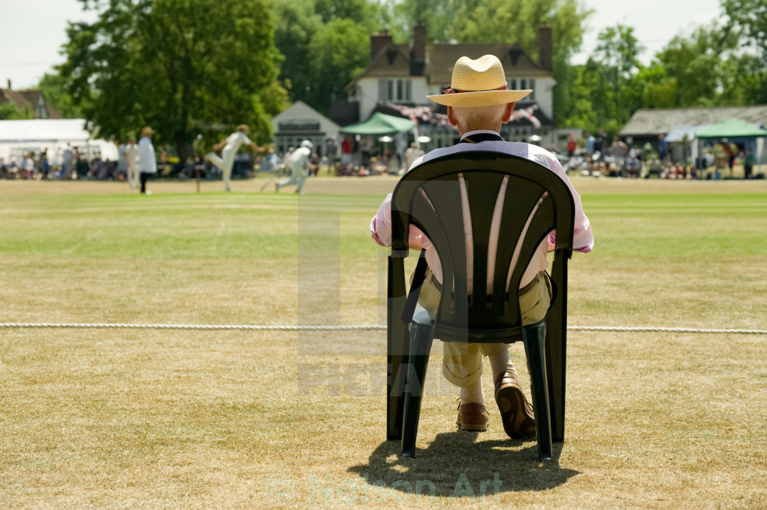 """watching the cricket"" stock image"