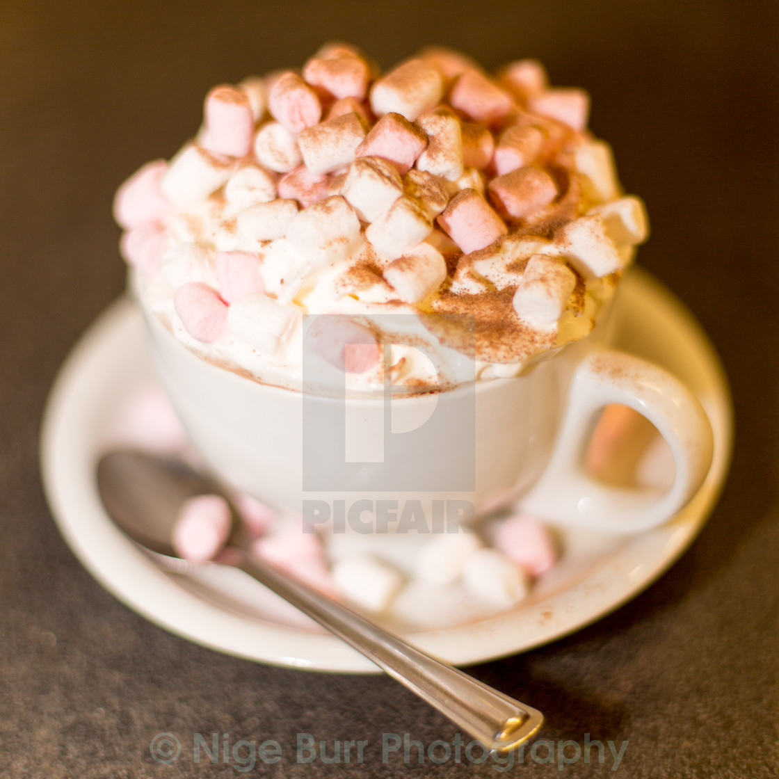 """Here's your Hot Choc"" stock image"