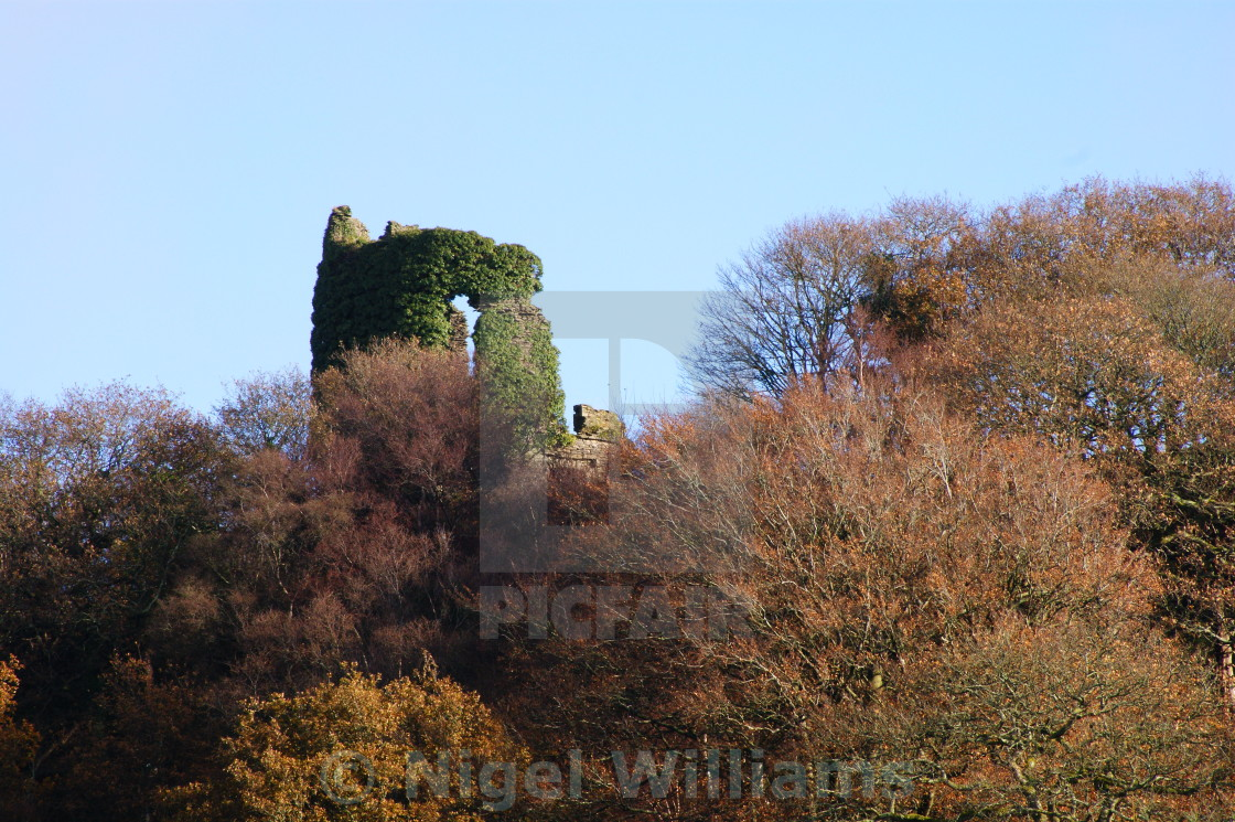 """The Ivy Tower"" stock image"