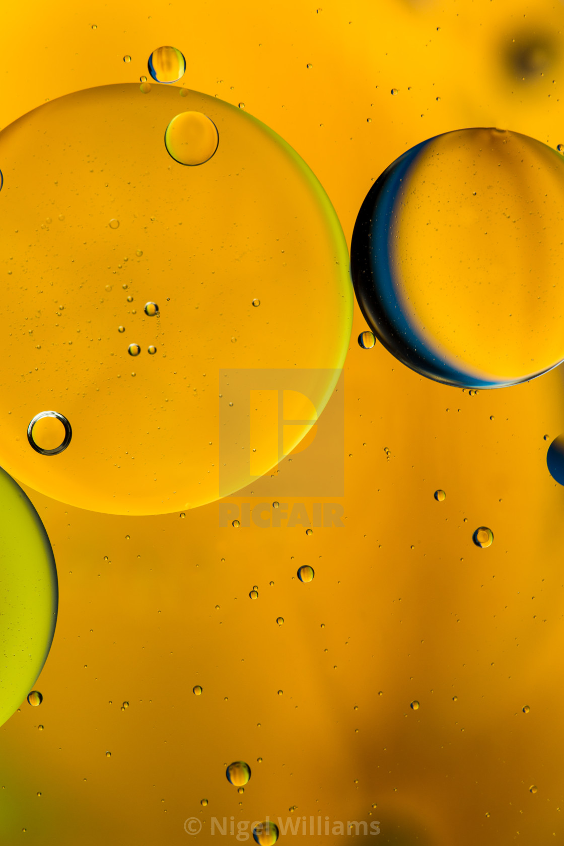 """Golden Bubbles"" stock image"