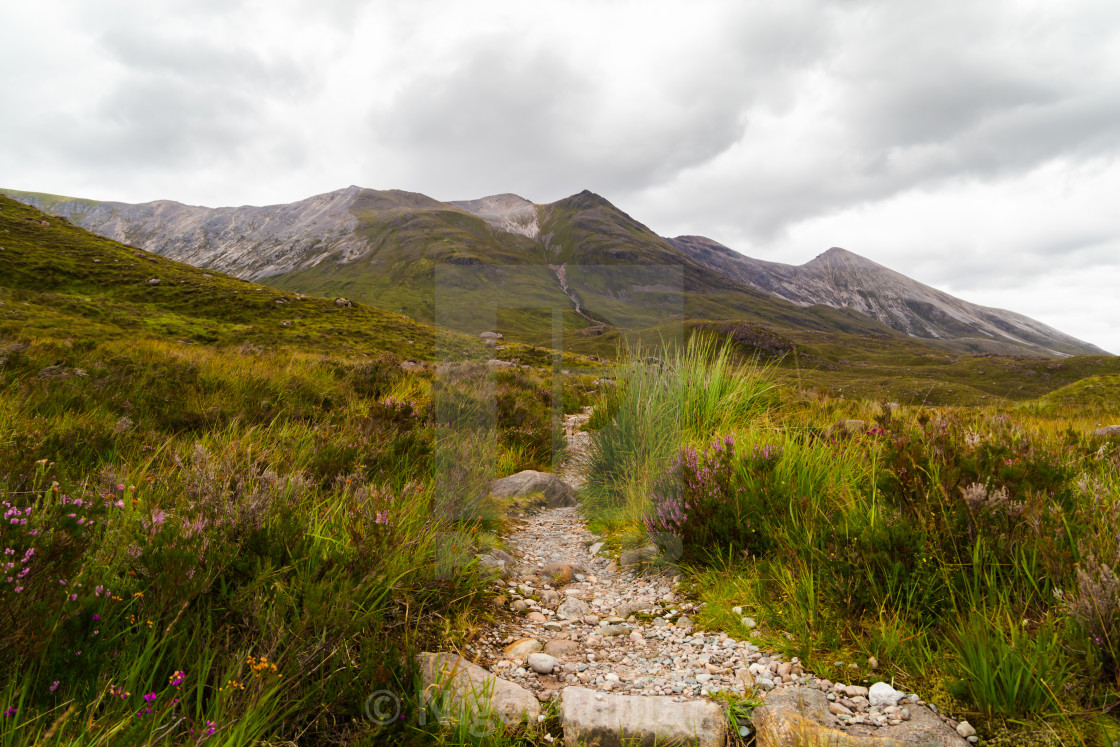 """Path to the Mountains"" stock image"