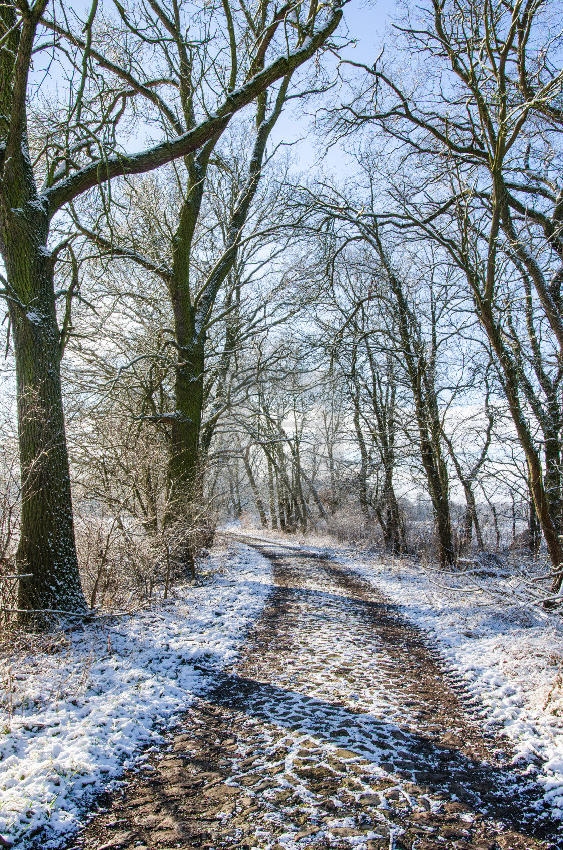 """Alley path in winter"" stock image"