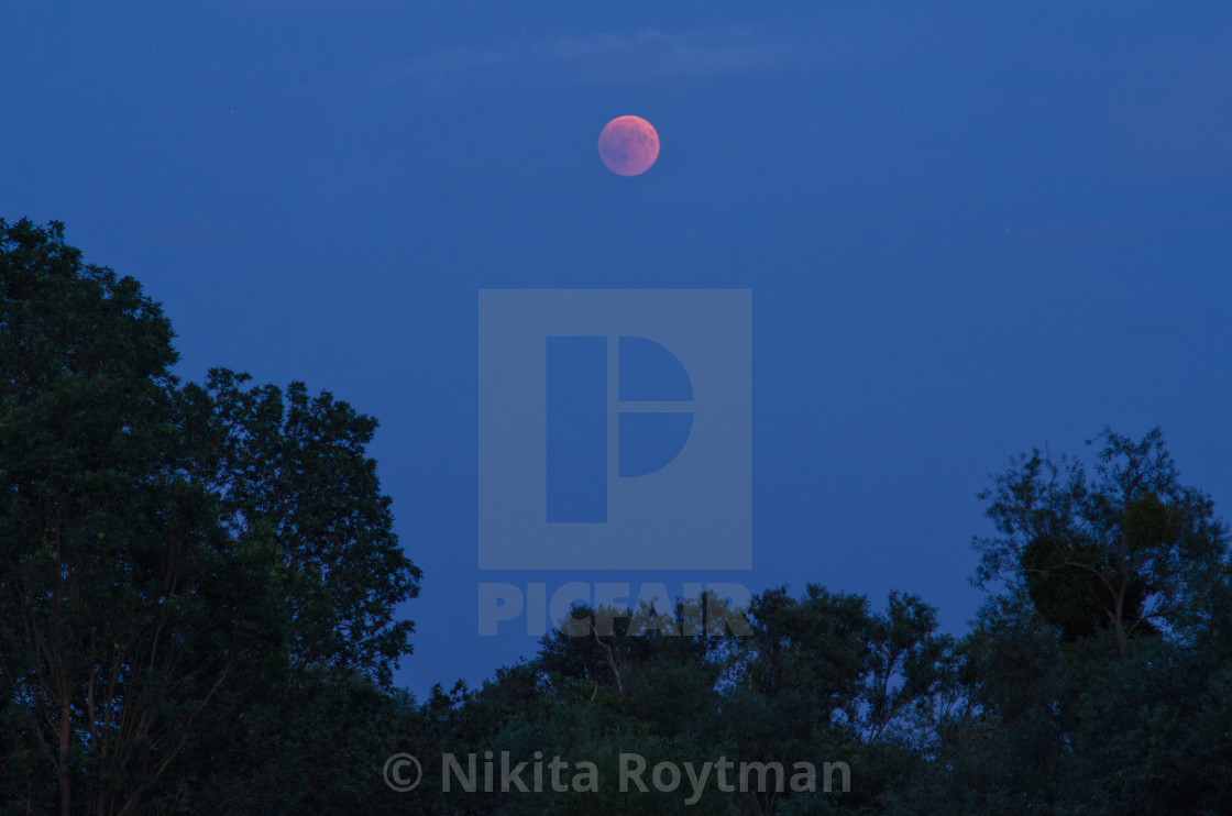 """Evening of the lunar eclipse"" stock image"