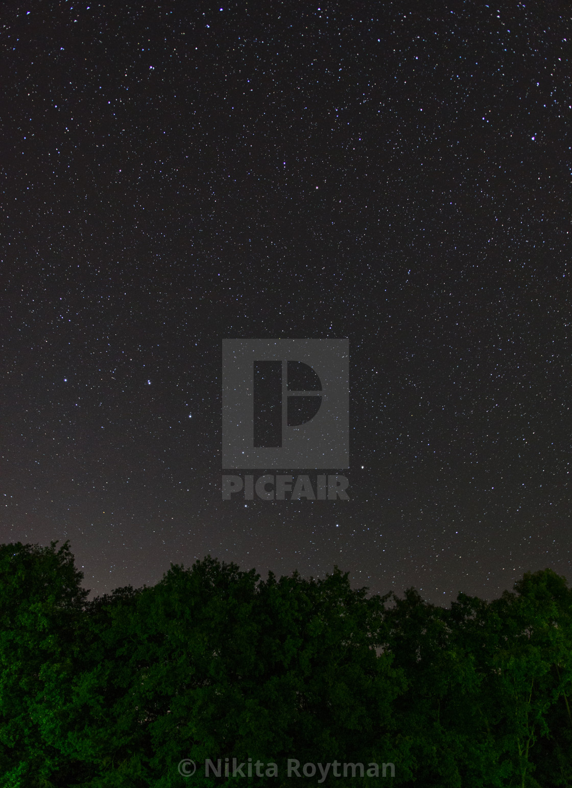 """Big and Small Dipper over the forest trees"" stock image"