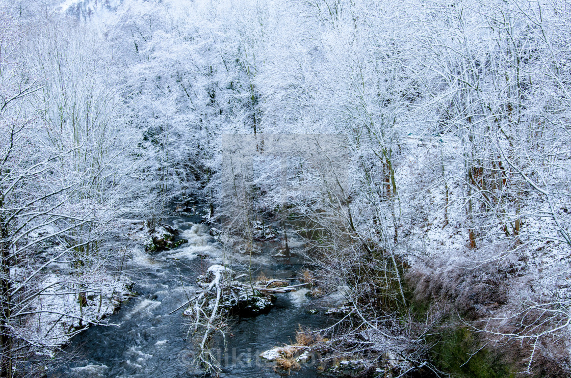 """River Bode In Harz"" stock image"