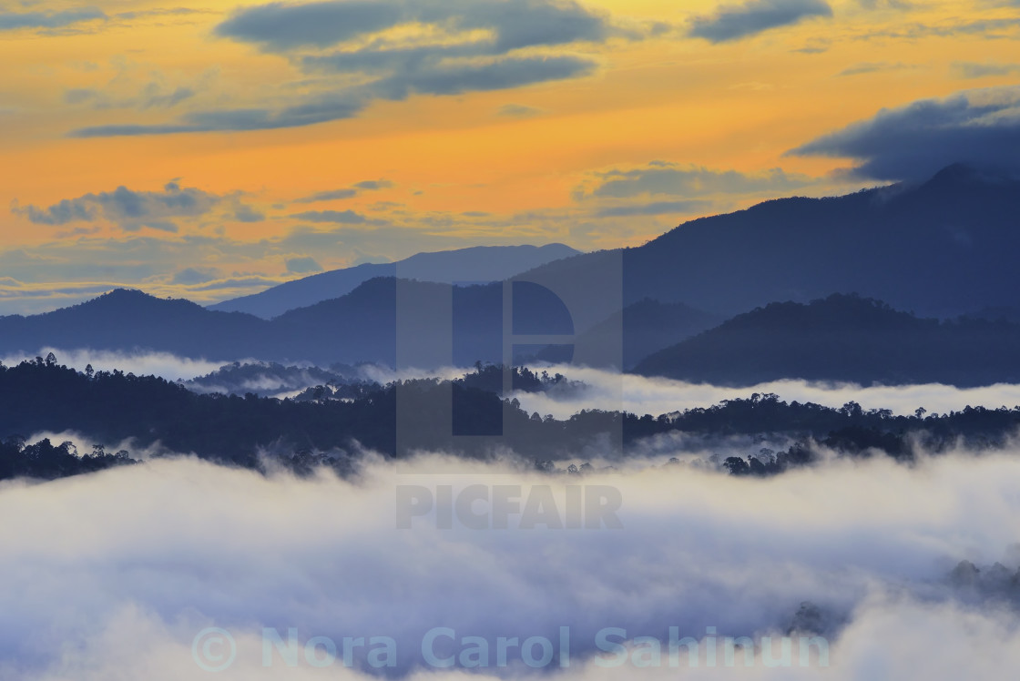 """Sunrise over rain forest in Danum Valley Conservation Area in Lahad Datu, Sabah Borneo, Malaysia."" stock image"