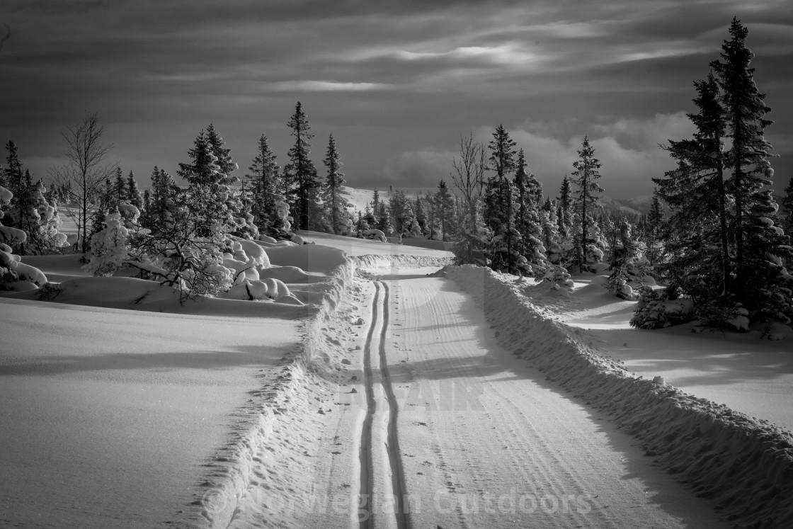 """The ski track"" stock image"