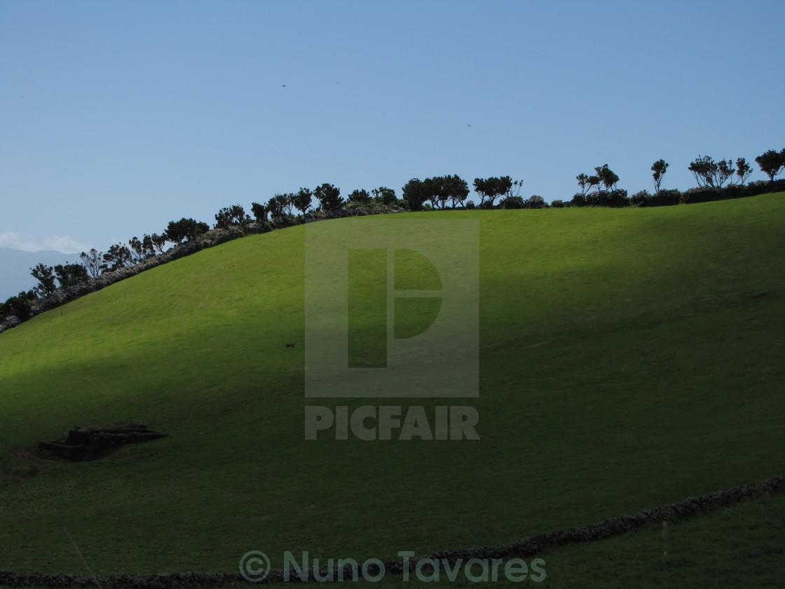 """Landscape"" stock image"