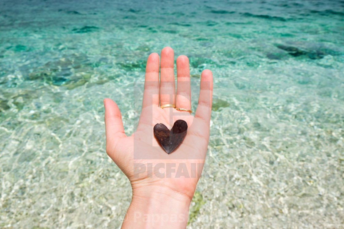 """""""A hand holding a heart-shaped leaf in Kefalonia, Greece."""" stock image"""