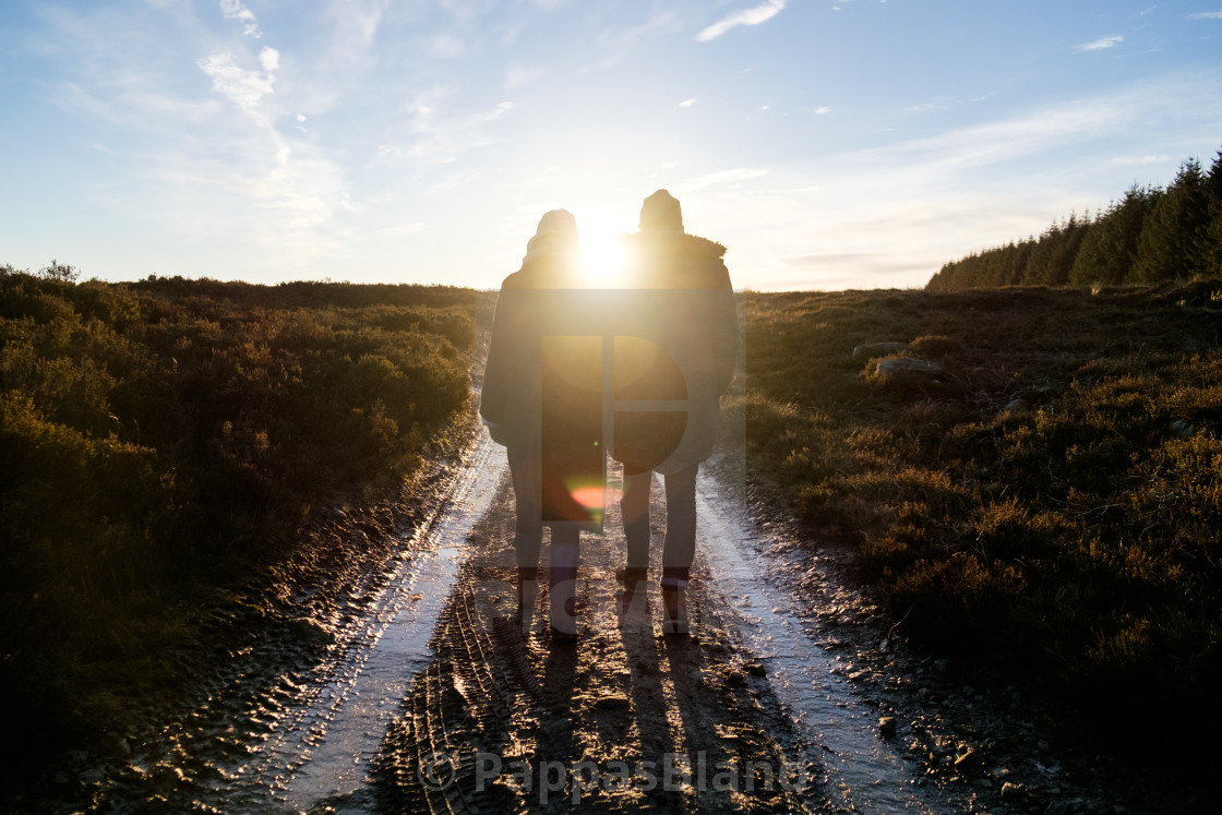 """""""A couple walk down a public footpath through a farm in Northumberland, England in winter."""" stock image"""