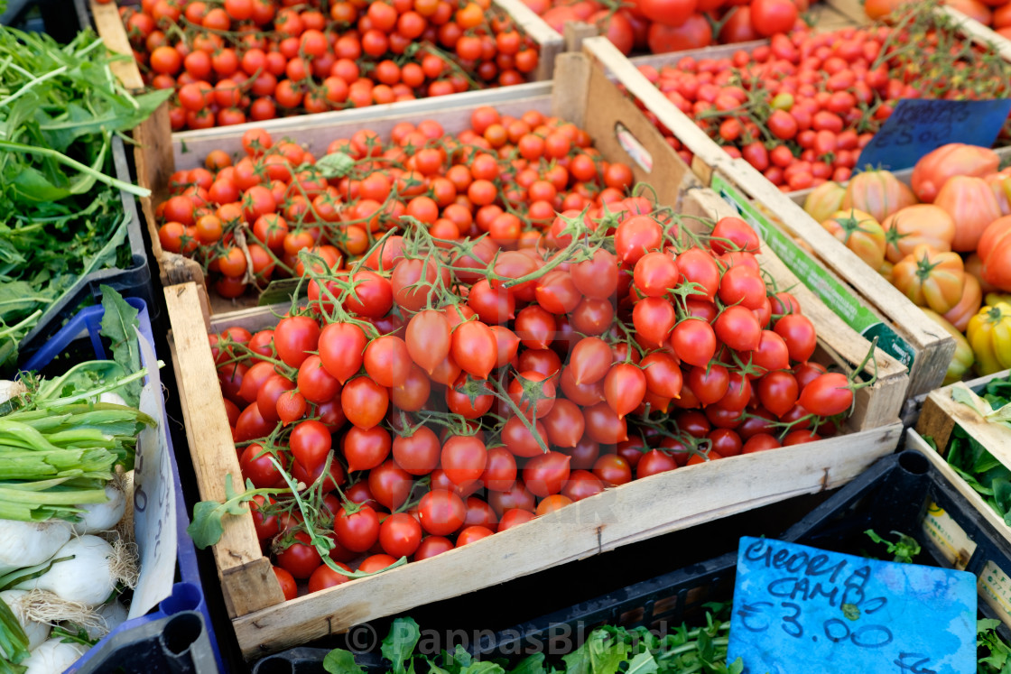 """""""Tomatoes for sale at a market stall in Trastevere, Rome, Italy."""" stock image"""