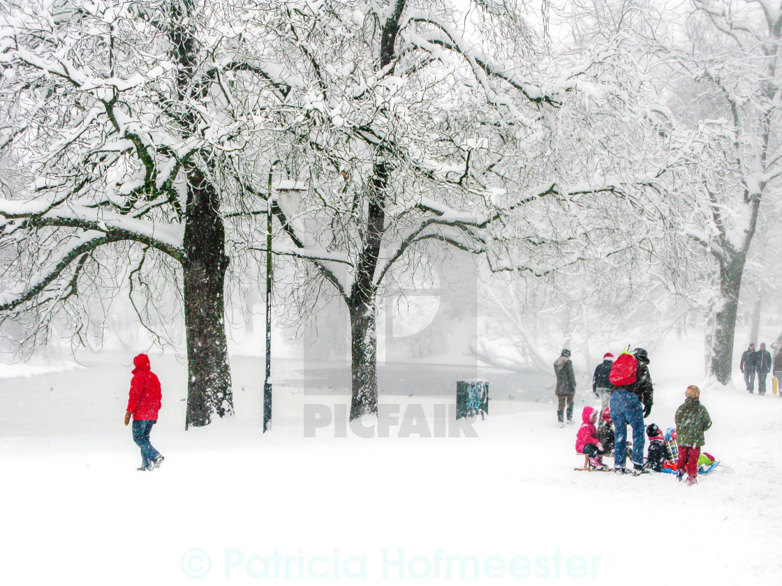 """A snowy day in the park"" stock image"
