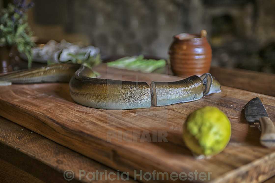 """Fresh mackerel in chunks"" stock image"