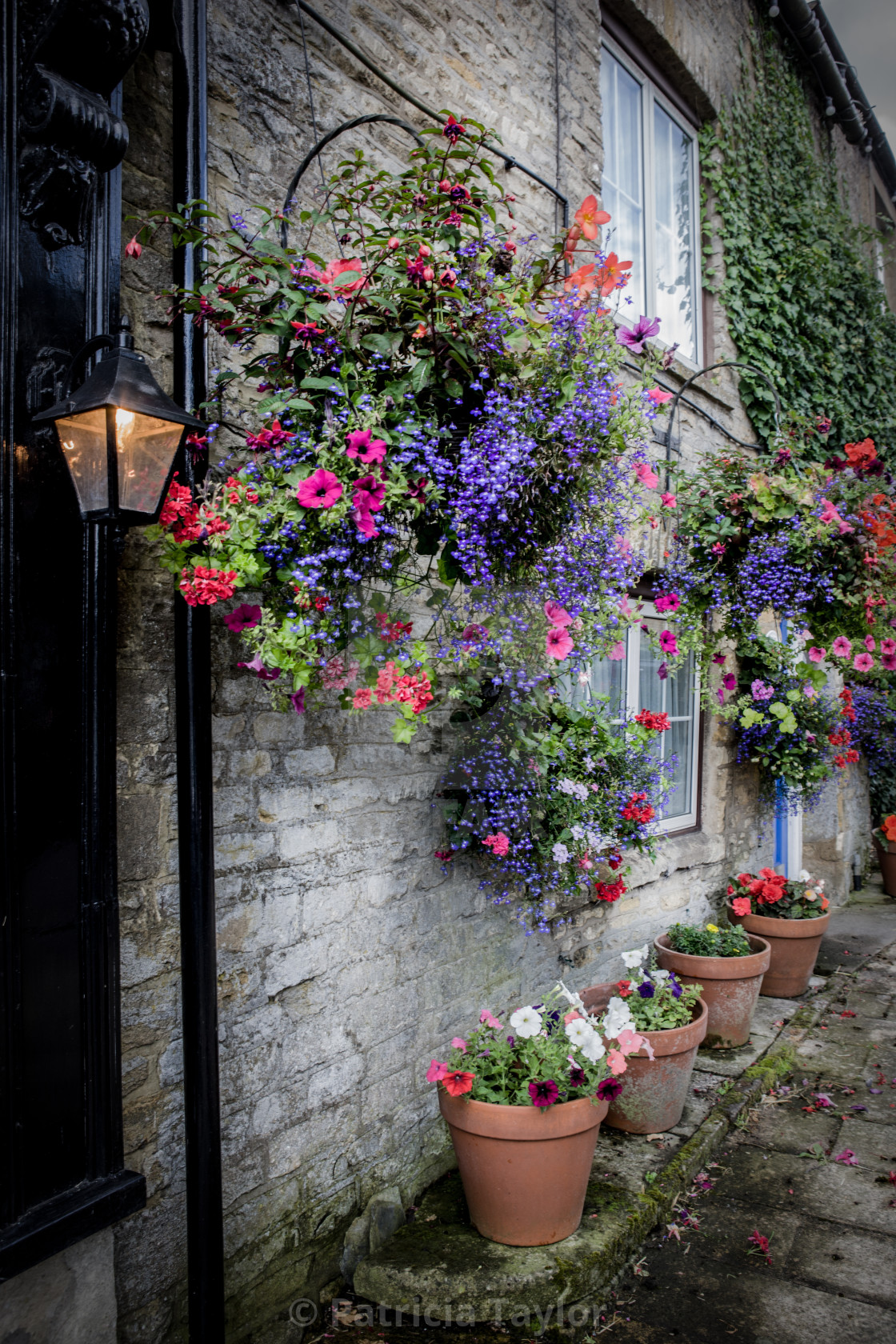 """""""Hanging baskets and pot plants in Stow on the Wold in the Cotswo"""" stock image"""