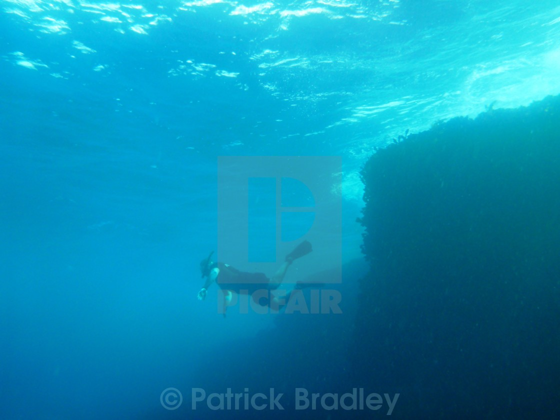 """Freediving at North Bondi"" stock image"