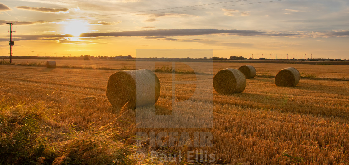 """Lincolnshire Harvest"" stock image"