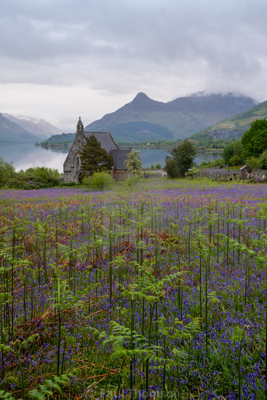 """Church with bluebells in Ballachulish Scotland"" stock image"