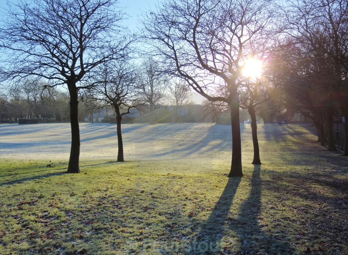 """""""A frosty Winter landscape."""" stock image"""