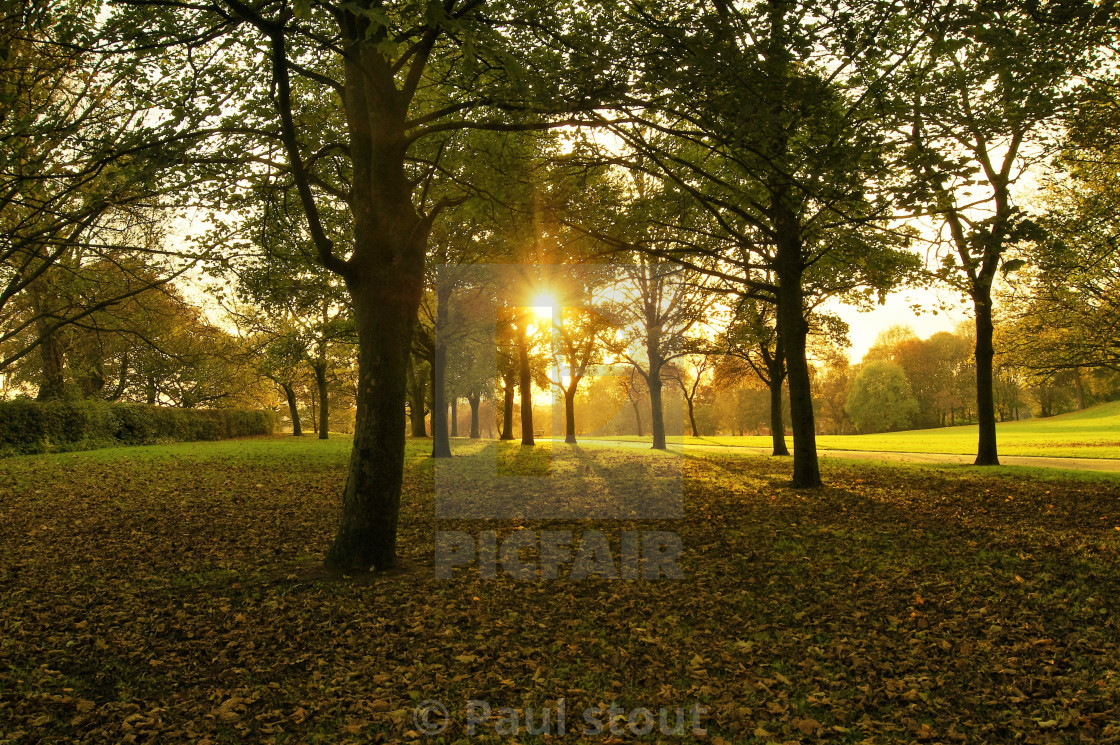 """Autumn Landscape."" stock image"