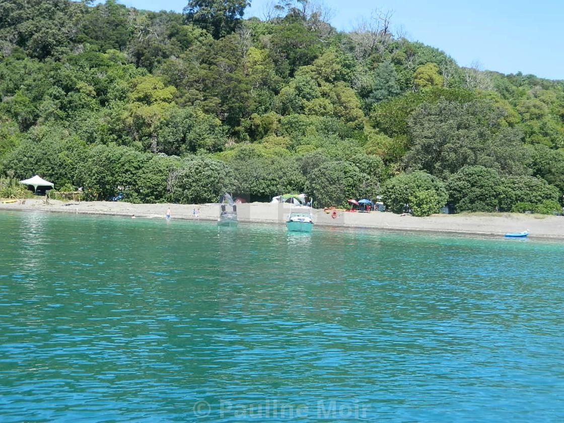 """Hauraki Gulf Island NZ"" stock image"