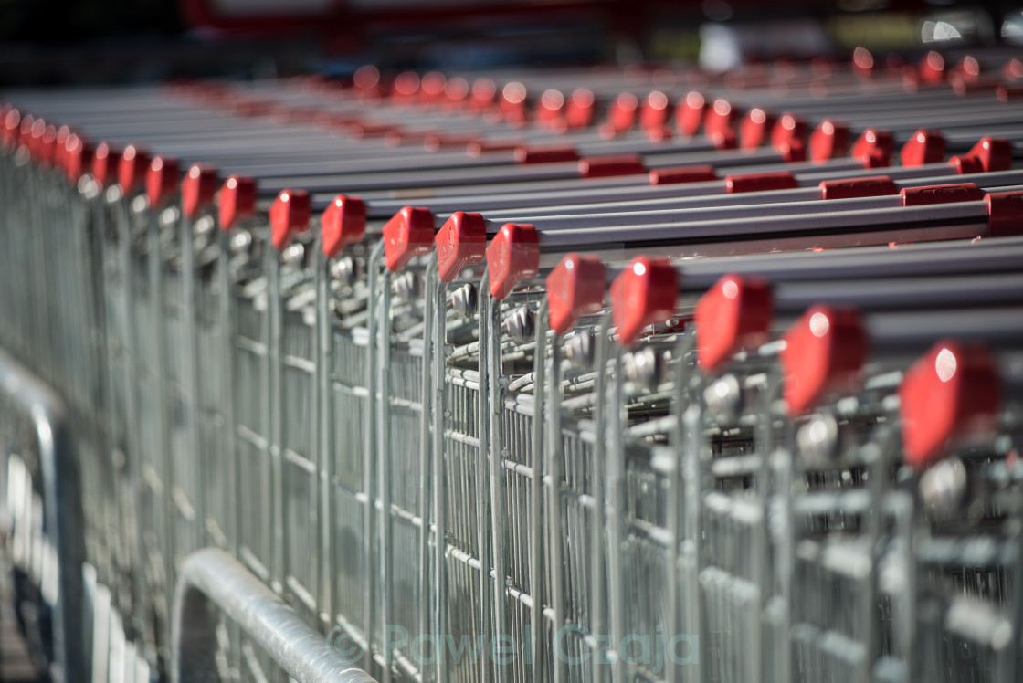 """Row of shopping carts on sunlight,"" stock image"