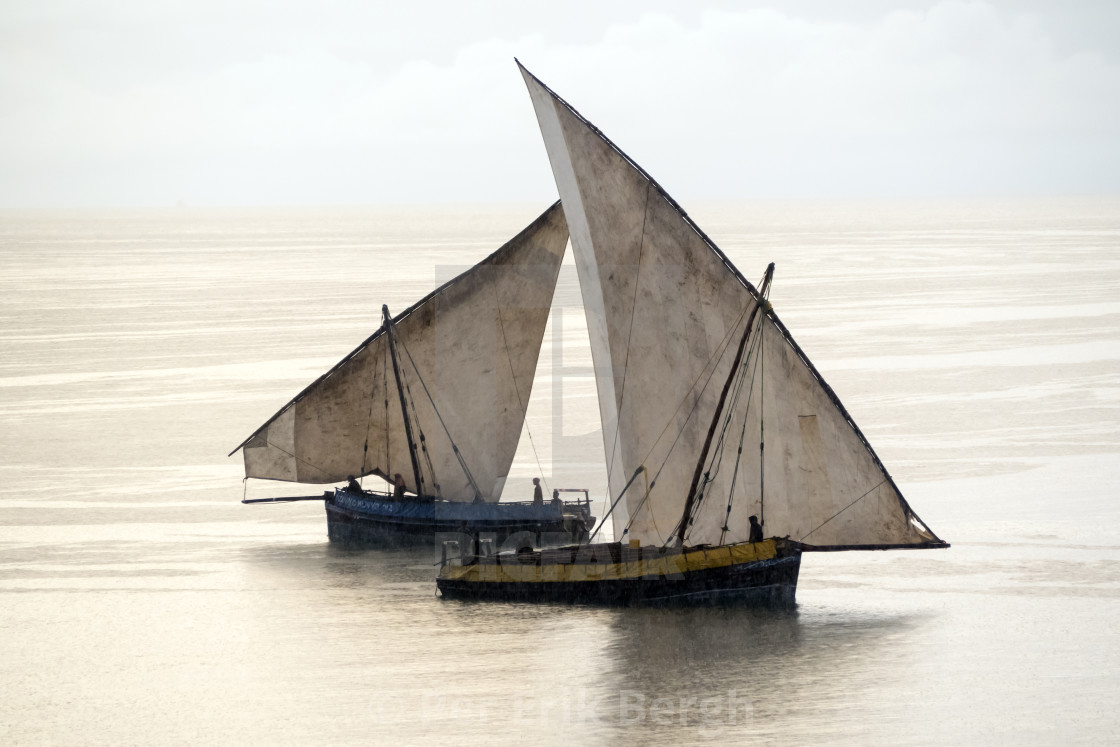 """""""Fishing dhows"""" stock image"""