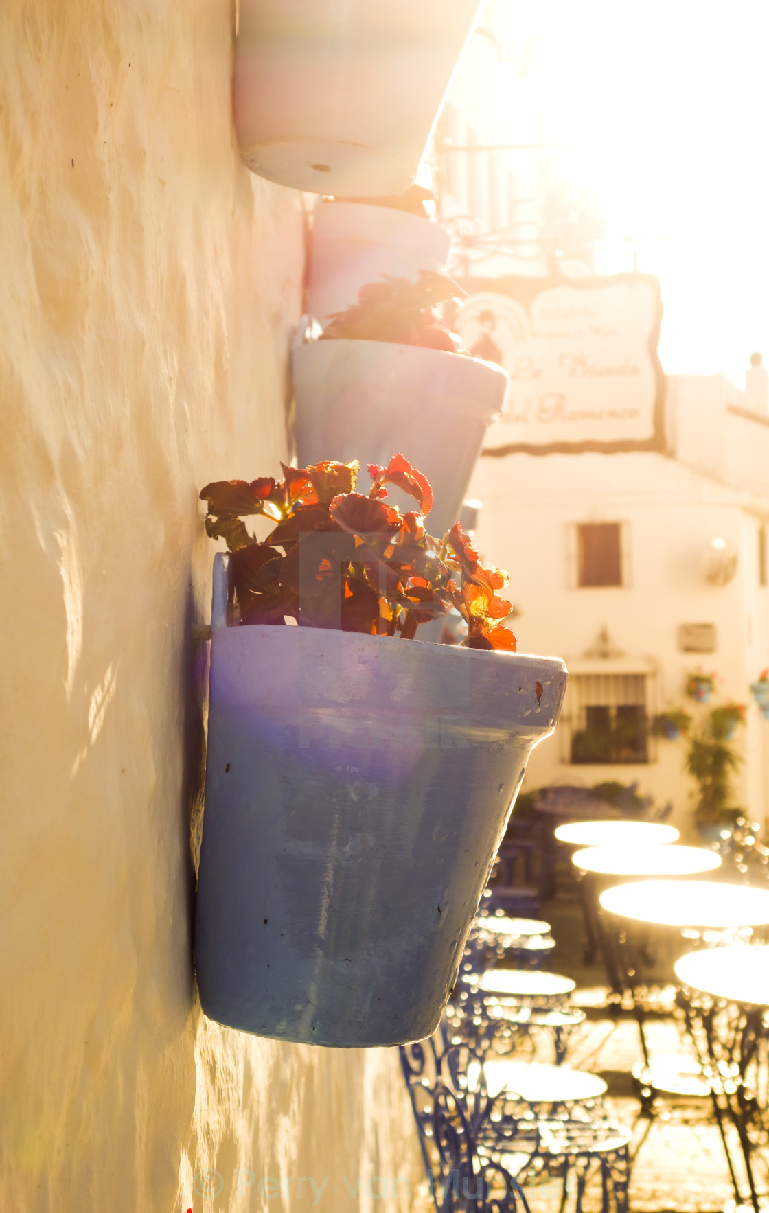 """Hanging flower pots"" stock image"