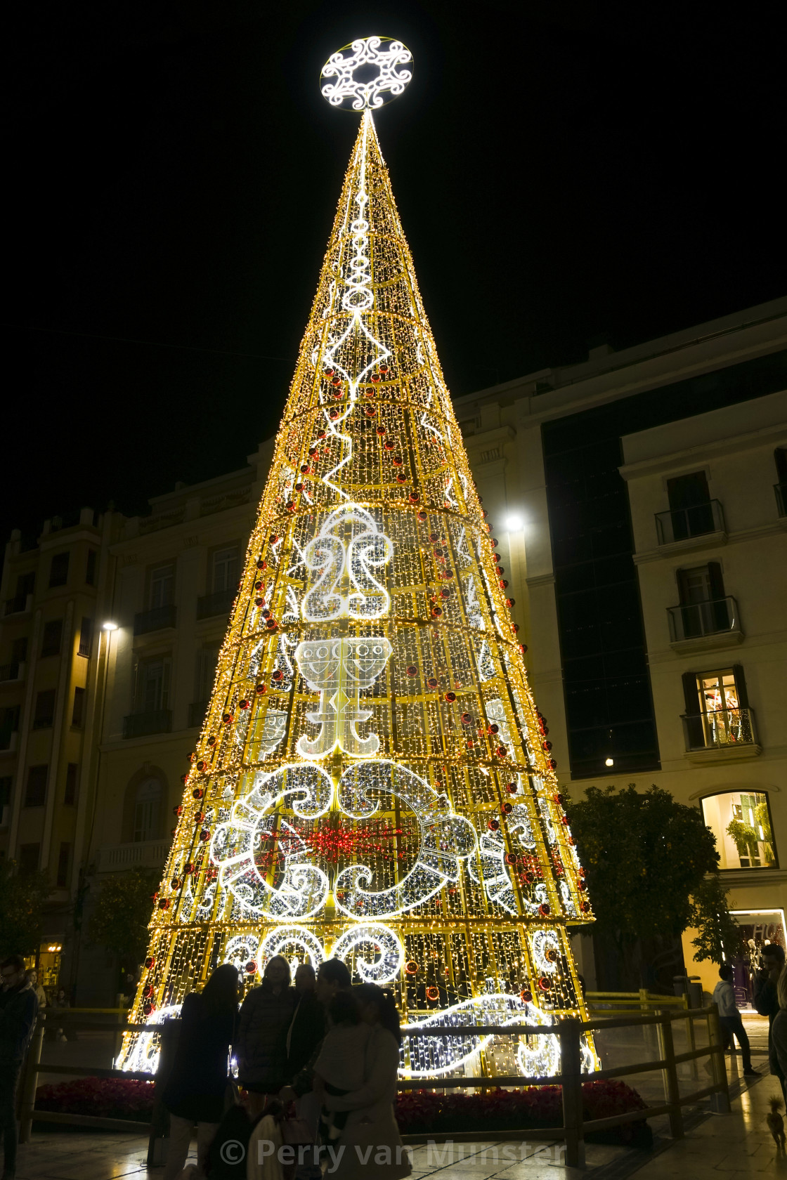 """Christmas lights decorations, tree, Calle Larios, Malaga city, Andalusia, Spain"