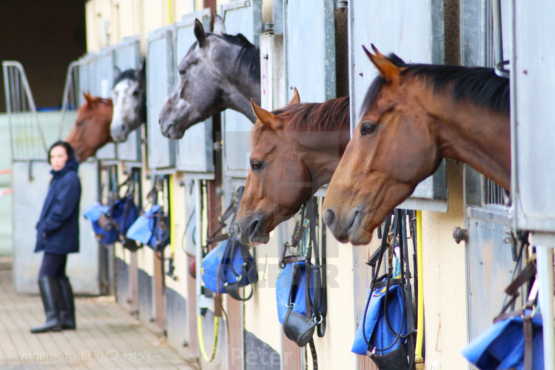 """Horse Stables"" stock image"