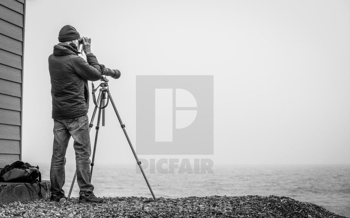 """Bird Spotting"" stock image"