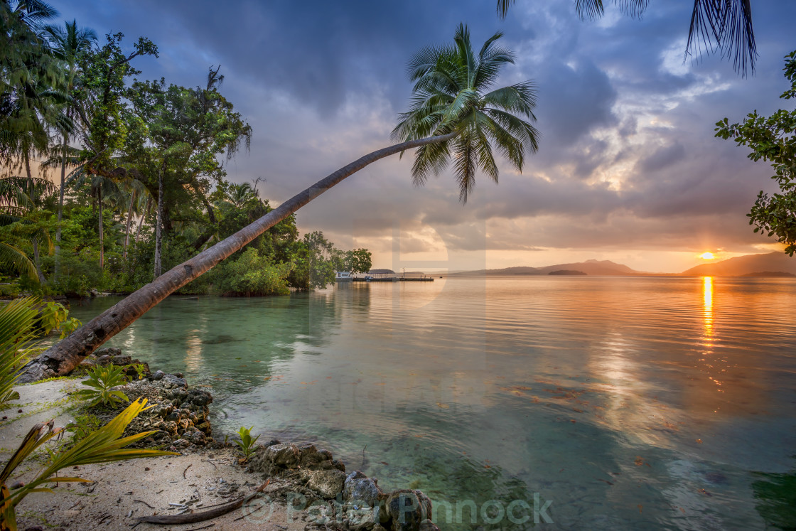 """Tropical getaway"" stock image"