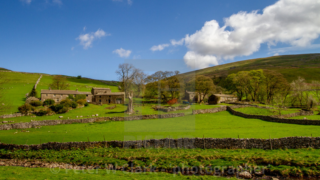 """""""Yorkshire Dales Farm, Cottages and Barns with Fields on Hillside"""" stock image"""