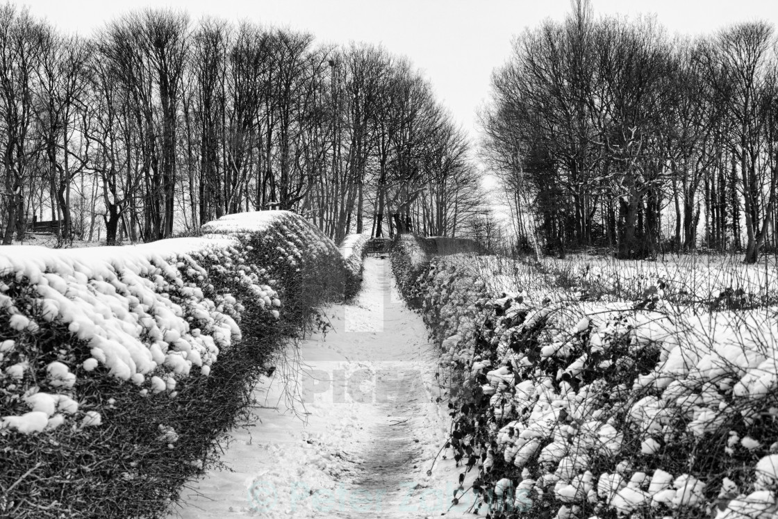 """A Wintery Path"" stock image"