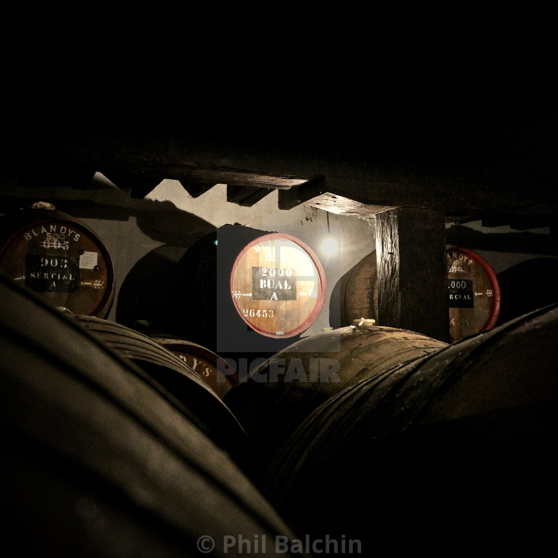"""Madeira Casks"" stock image"