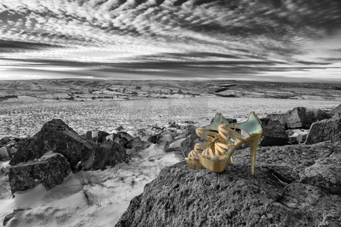"""Golden Shoes 2"" stock image"