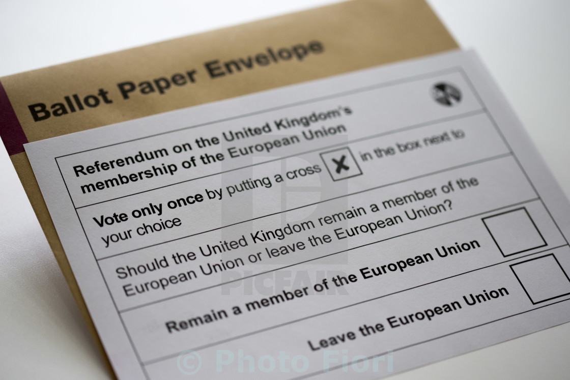 """European Union UK Referendum In or Out"" stock image"