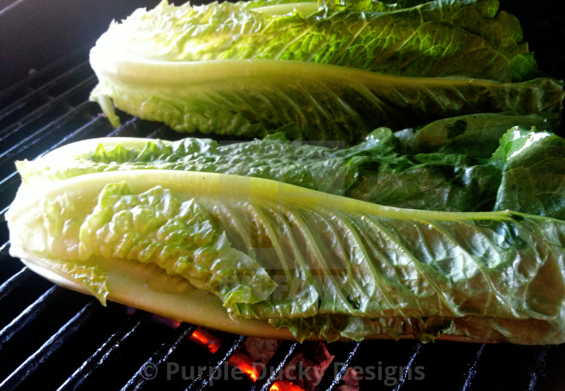 """Grilled romaine lettuce"" stock image"