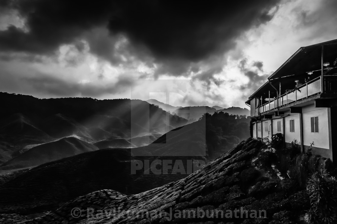 """Tea House"" stock image"