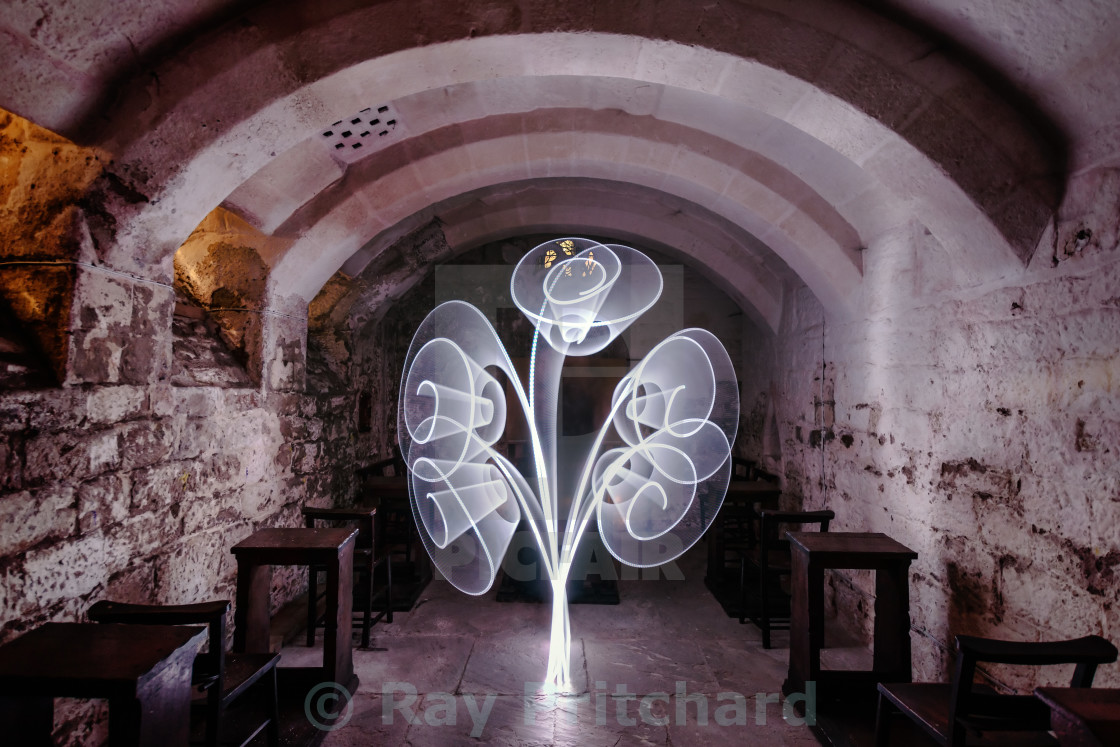 """""""Light Tree in the Crypt"""" stock image"""