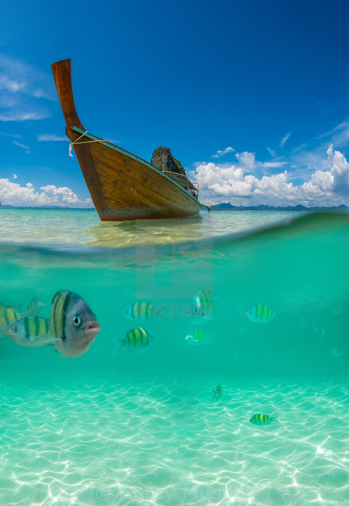 """Underwater picture with fish and traditional longtail boat in Maya bay, Ko..."" stock image"
