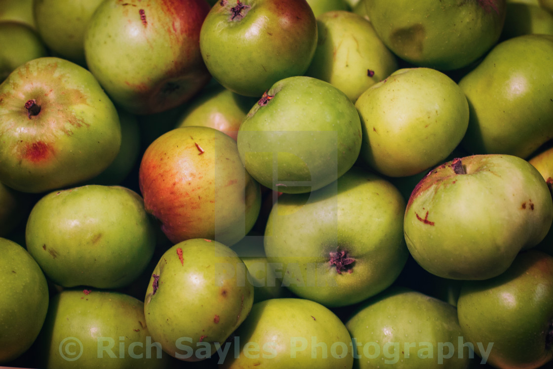 """Apples"" stock image"