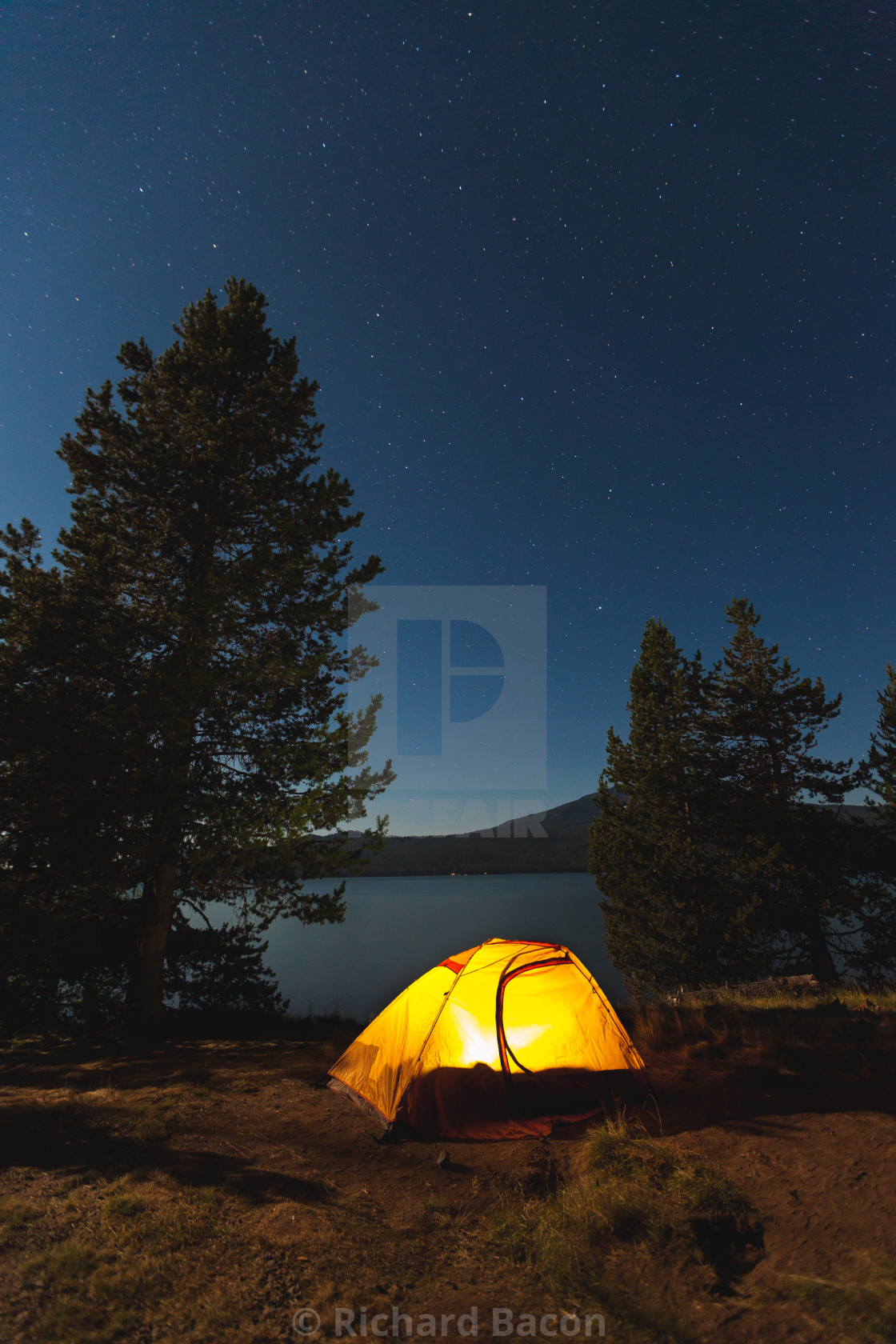 """Camping Under the Stars"" stock image"