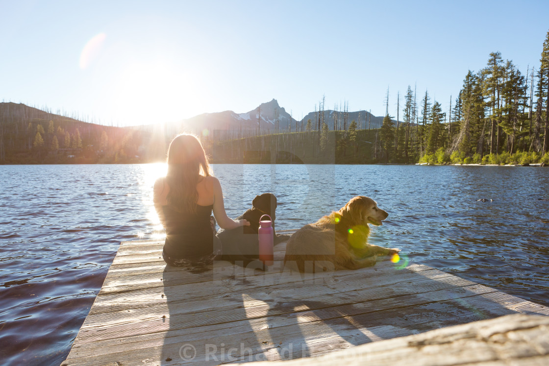 """""""Summer Dogs on Dock"""" stock image"""