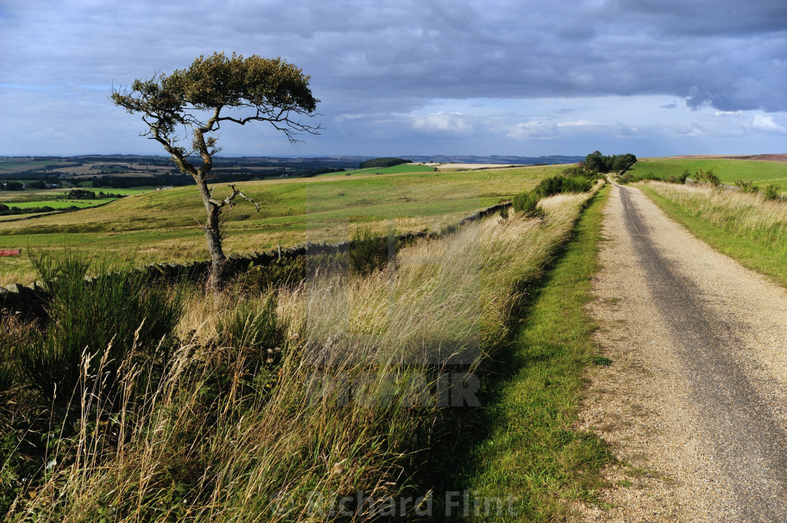"""""""Near Waskerley, County Durham on C2C cycle route"""" stock image"""
