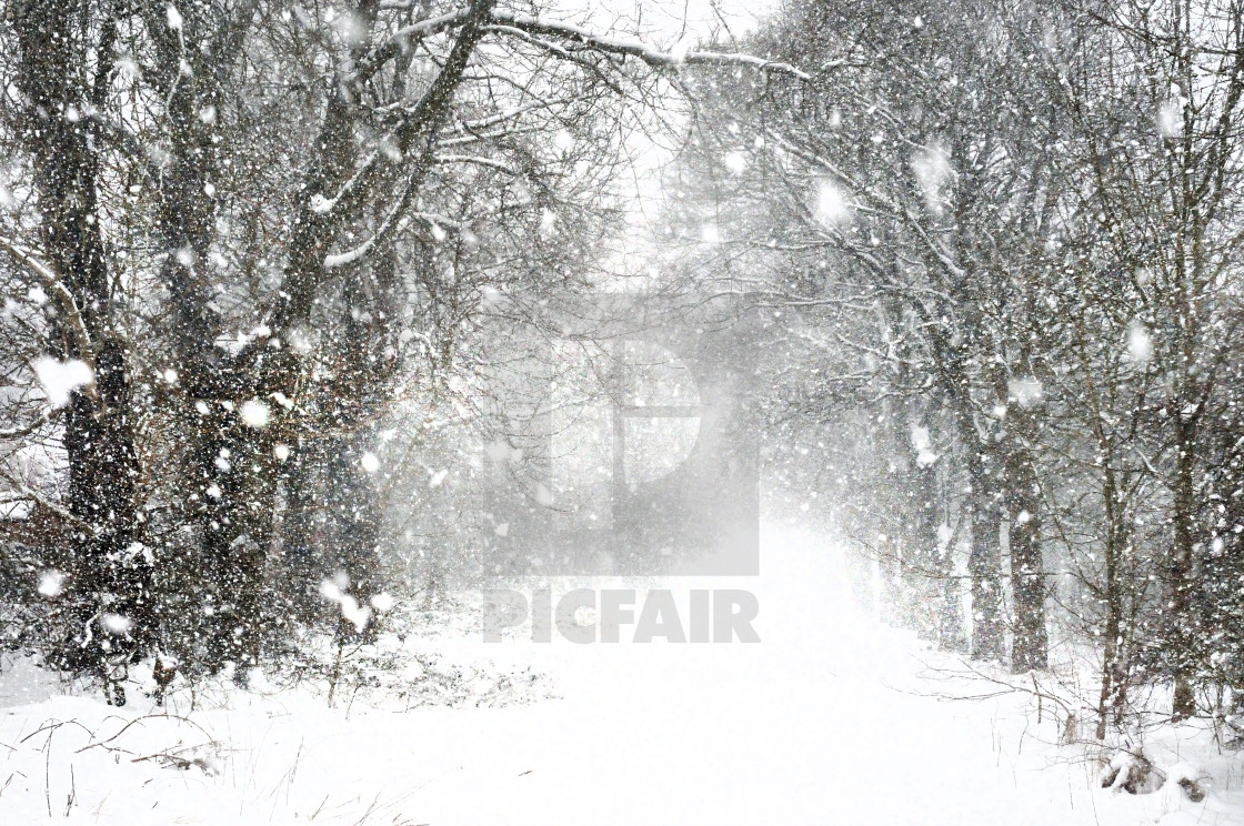 """""""Whiteout winter snow in the north of England"""" stock image"""