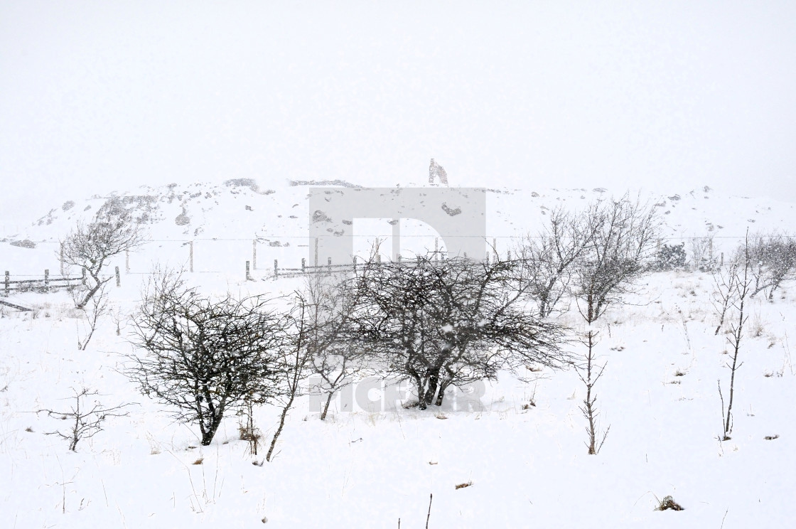 """Whiteout winter - Consett, County Durham"" stock image"