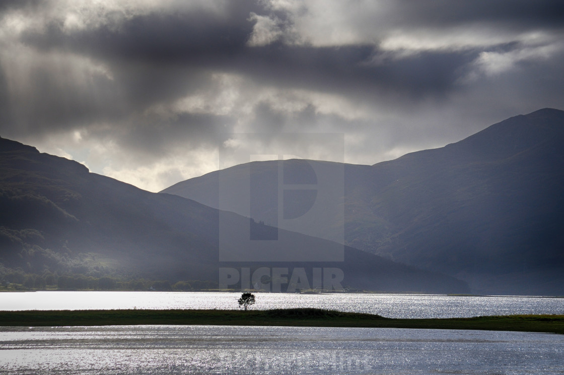 """The Lonely Tree - Loch Alsh, Highlands of Scotland"" stock image"
